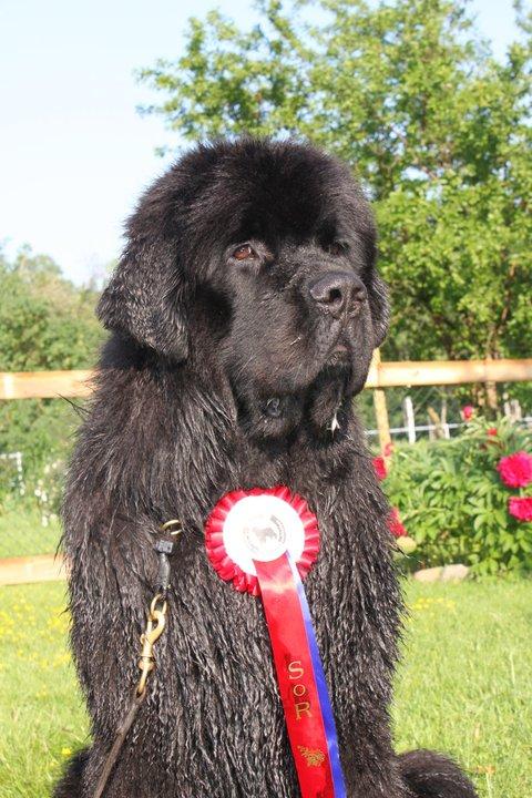 Big congratulations Maria and Bison