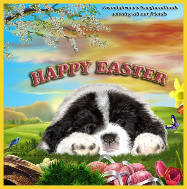 HAPPY EASTER TO ALL OUR FRIENDS
