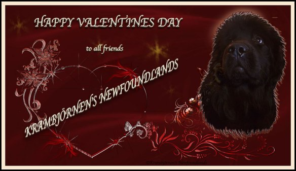 Happy Valentines Day to everyone